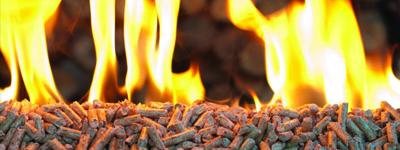 Biofuel_Pellets